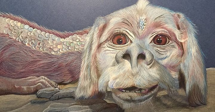 Do you love Falkor as I do?